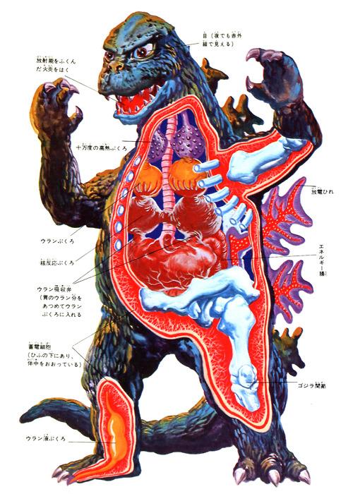 godzilla anatomie Die Anatomie von Godzilla