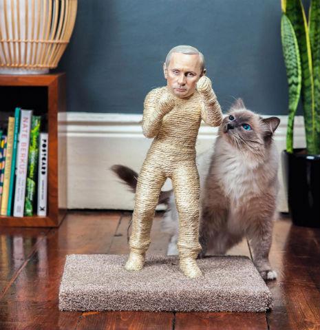 putin1sdfsdfsdfsdf1 Diktator Kratzbäume und Katzenklos