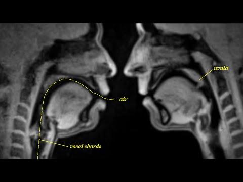09 Liebe und Leben im MRI Scanner (NSFW: Weird as fuck!)