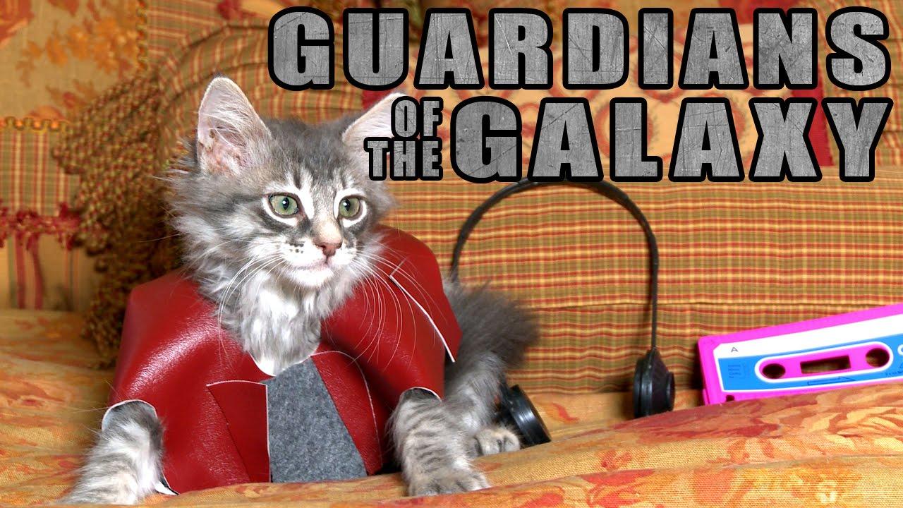 maxresdefault9FH0HFT6 Guardians of the Galaxy mit niedlichen, niedlichen Kätzchen!