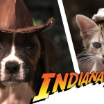 """Indiana Bones and the Raiders of the Lost Bark"" (ist kein Porn… wirklich!)"