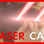 LASER CAT PEW PEW PEW