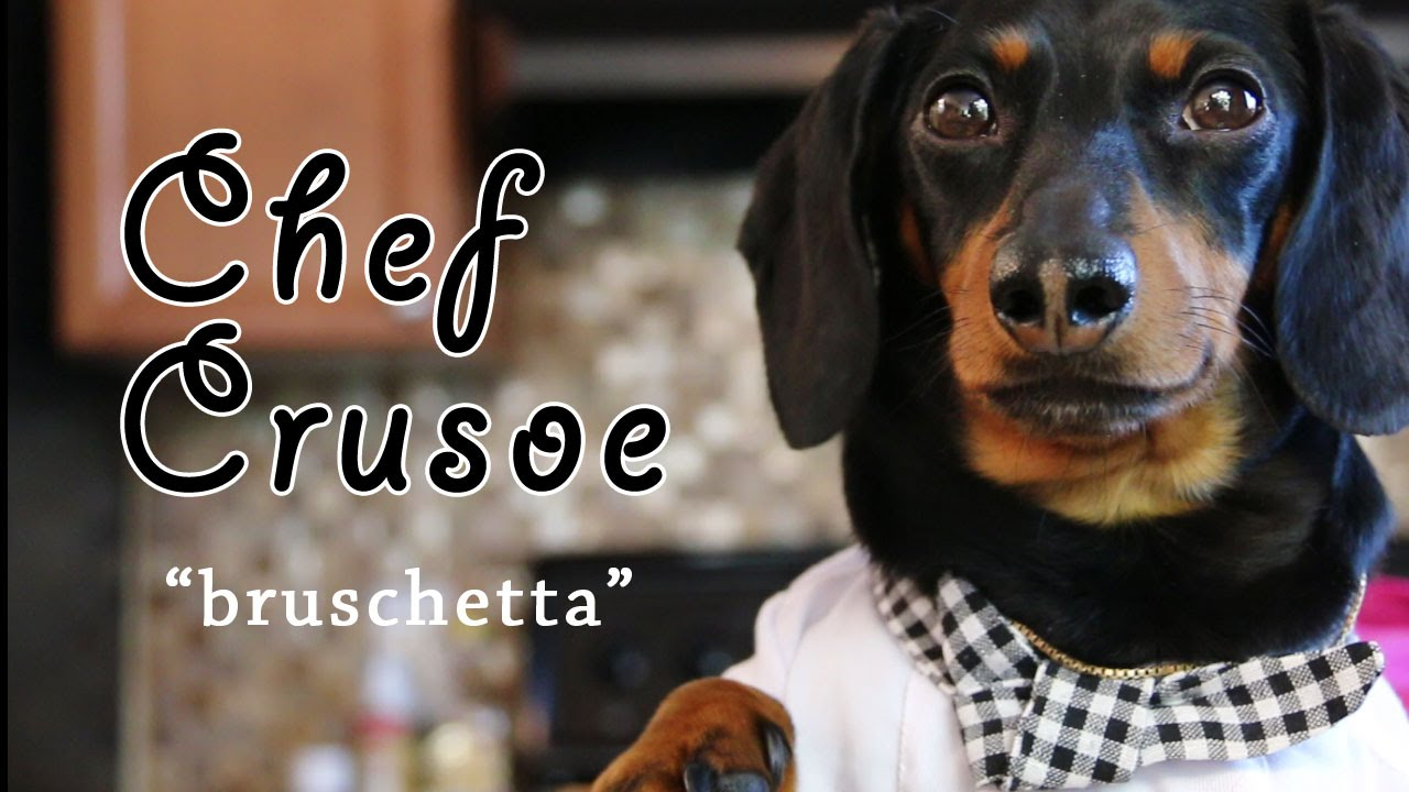 Crusoe der Dackel zeigt uns, wie man richtig Bruschetta macht