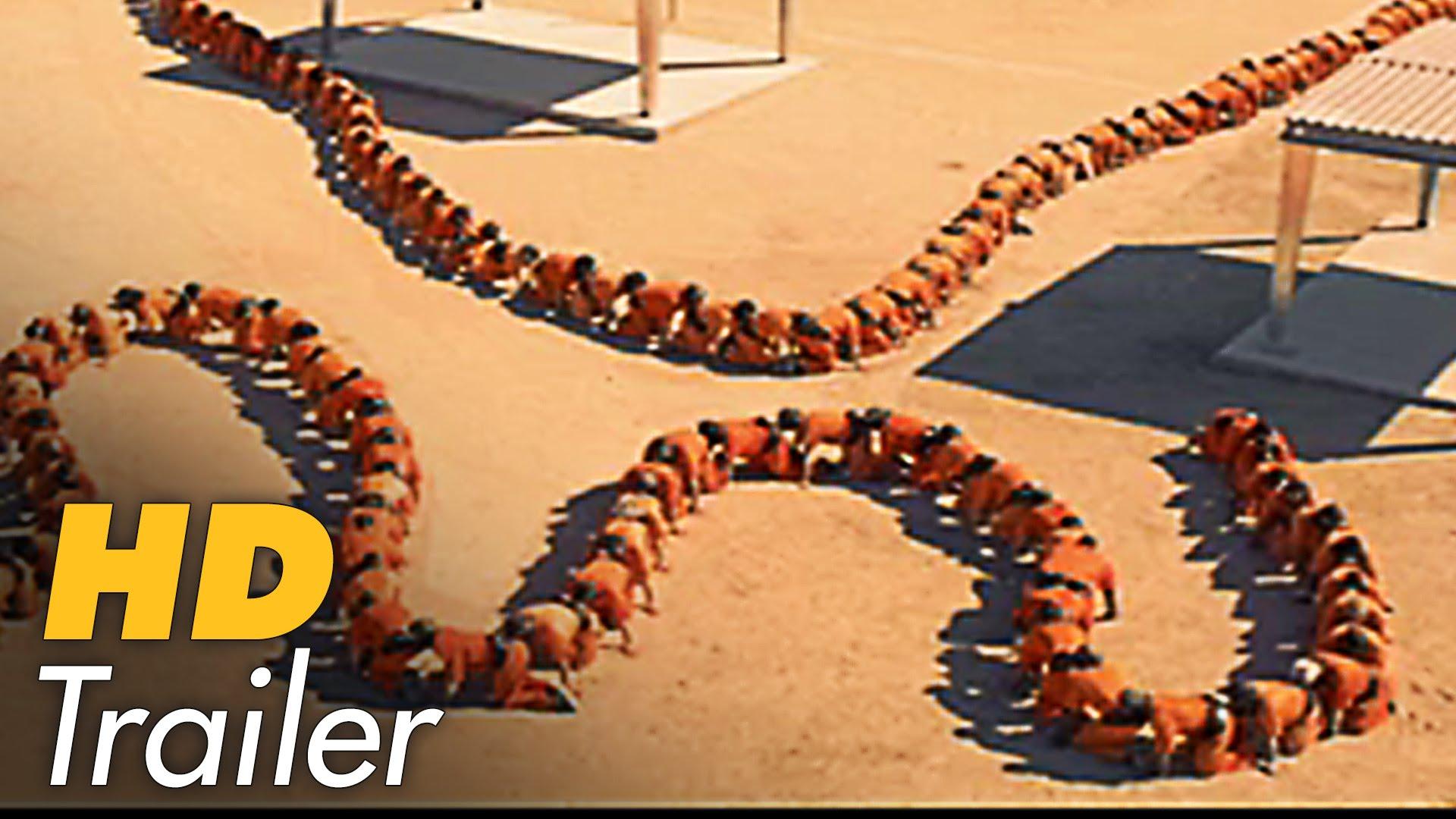 "Im dritten Teil wird ""Human Centipede"" total meta"