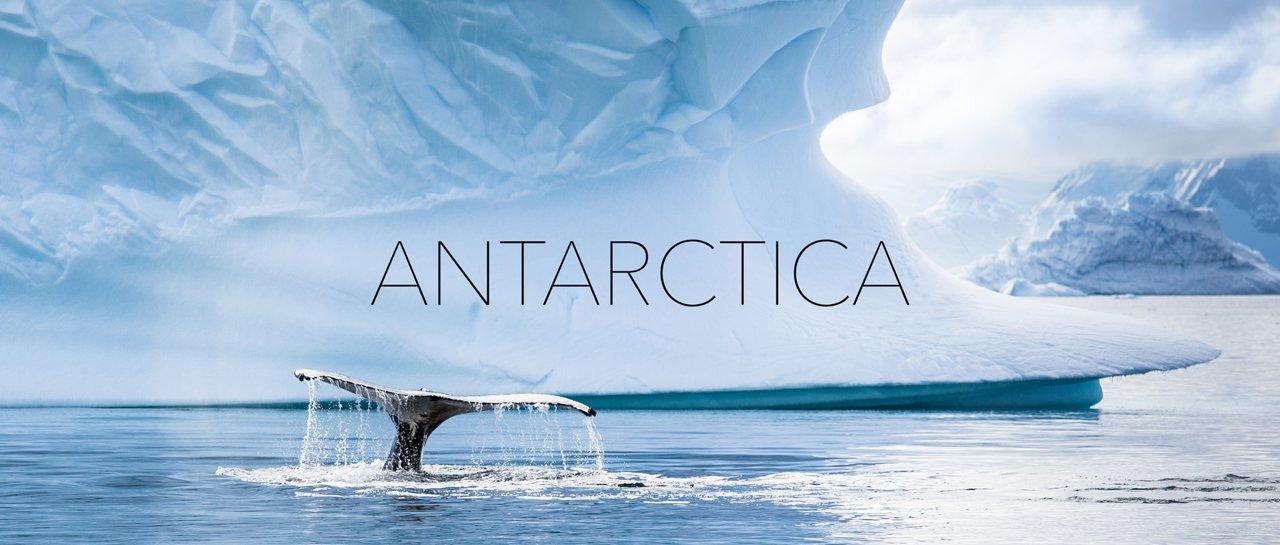 In schönen Bildern durch die Antarktis