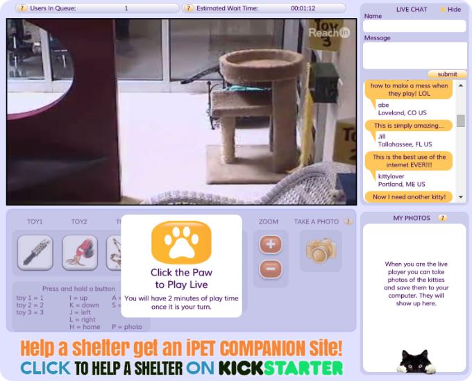onlinekatzen