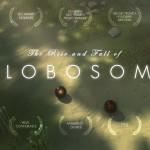 """""""The Rise and Fall of Globosome"""" – Das Leben und Sterben einer fiktiven Alienspezies"""
