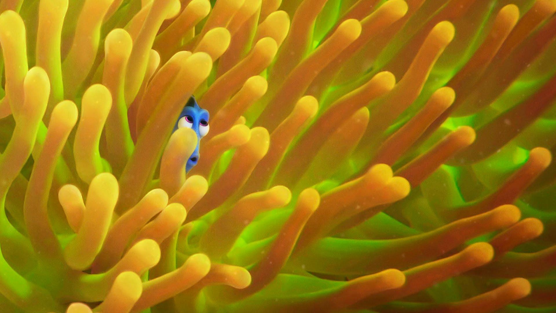 """Finding Dory"" bekam noch einen neuen Trailer! Whoop Whoop!"