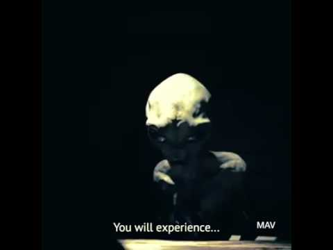 Ein äußerst realistisches Interview mit einem Alien