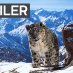 """Planet Earth II"" bekommt einen noch längeren, schöneren Trailer"