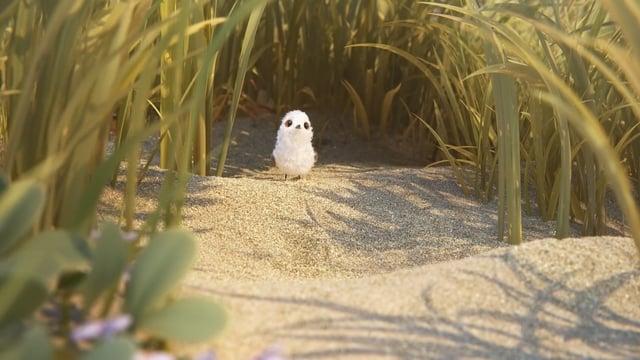 """Der neue Pixar-Kurzfilm """"Piper"""" erzählt die Geschichte einer nicht so mutigen Vögelchens am Strand"""