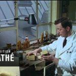 In den 60ern in einer Matchbox-Fabrik