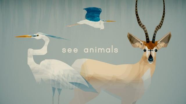 """See Animals"""