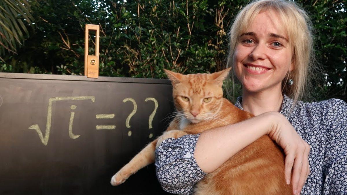 """The Joy of Mathematics"" erklärt uns die Mathematik, wie es Bob Ross getan hätte"