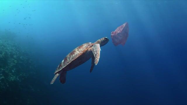 Morgan Freeman kommentiert eine Doku über den neusten Meeresbewohner: Plastik