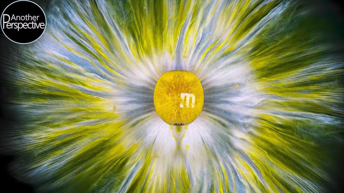 Fast schon hypnotische Aufnahmen von in Wasser schmelzenden M&Ms